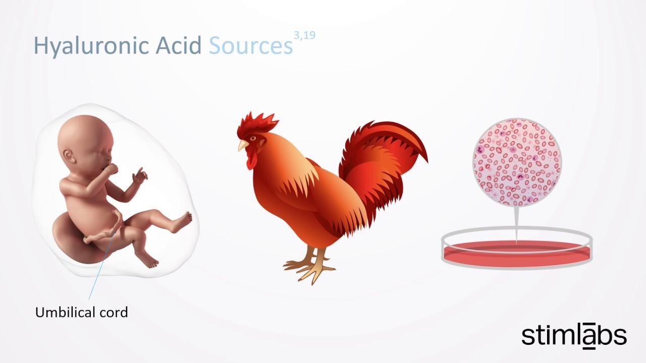 chiet-xuat-luoc-ga-chicken-comb-extract-la-gi-huu-ich-nhu-the-nao-voi-da